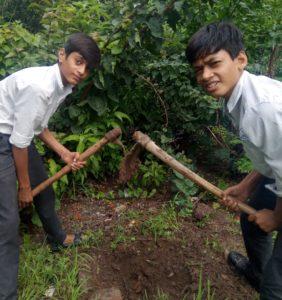Eco Club Activity 13-07-2019